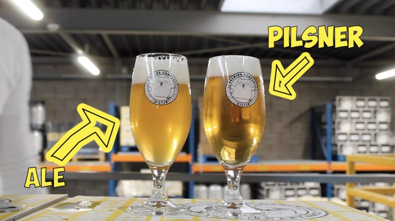 Blog- Pale Ale vs Pilsner